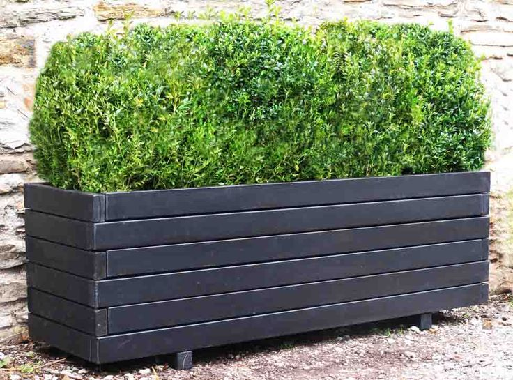 Large Rectangular Wooden Planters Provide The Perfect Support For