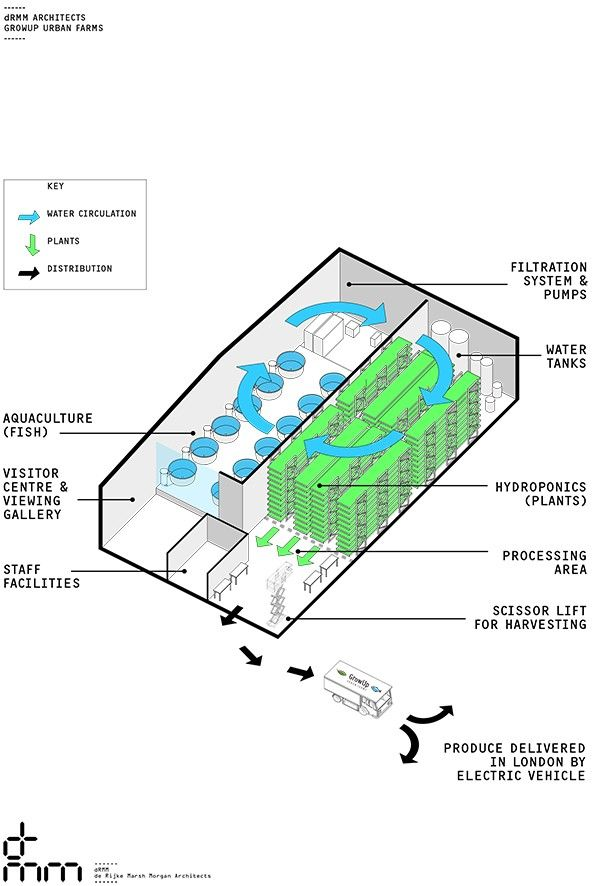 Uks first commercial scale aquaponics urban farm could be blueprint uks first commercial scale aquaponics urban farm could be blueprint for city farming an old disused warehouse in the east of london is undergoin malvernweather Choice Image