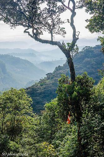 Views from Adam's Peak, Sri Lanka