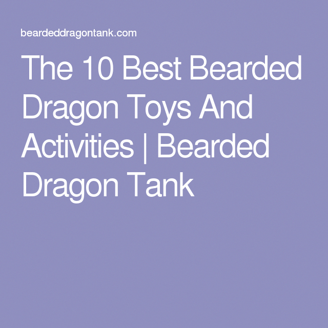 The 10 Best Bearded Dragon Toys And Activities