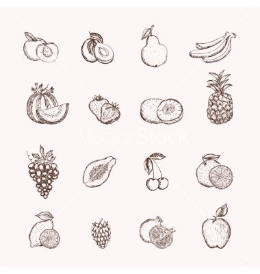 Fruits icons set vector by macrovector on VectorStock®