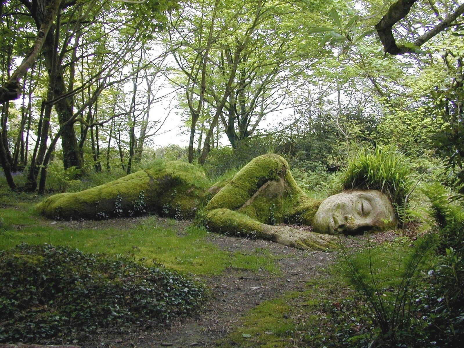 9be701ce6e7e21eb2b39ddad79c22455 - Lost Gardens Of Heligan To Eden Project