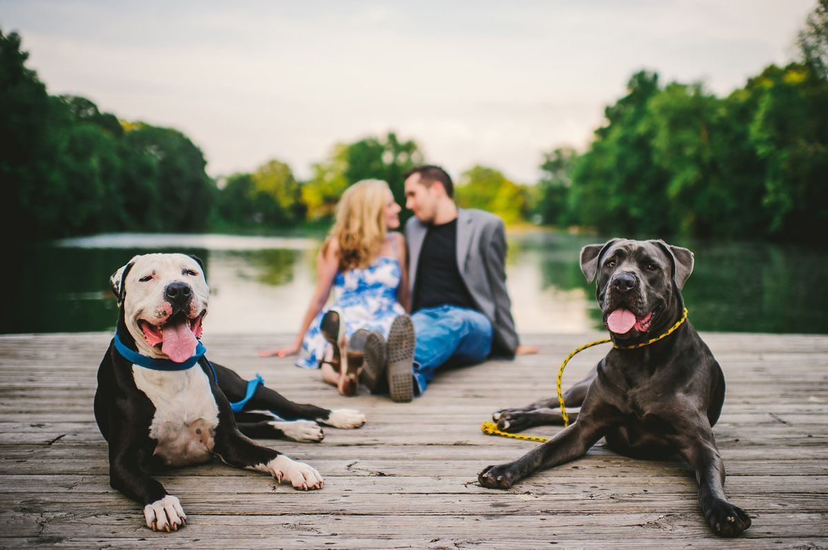 The Oberports Piedmont Park Engagement Photo With Dogs