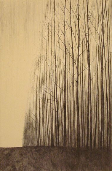 Tomura was born in 1951 in Japan. He studied drawing and printmaking at the IWATE University in Japan.