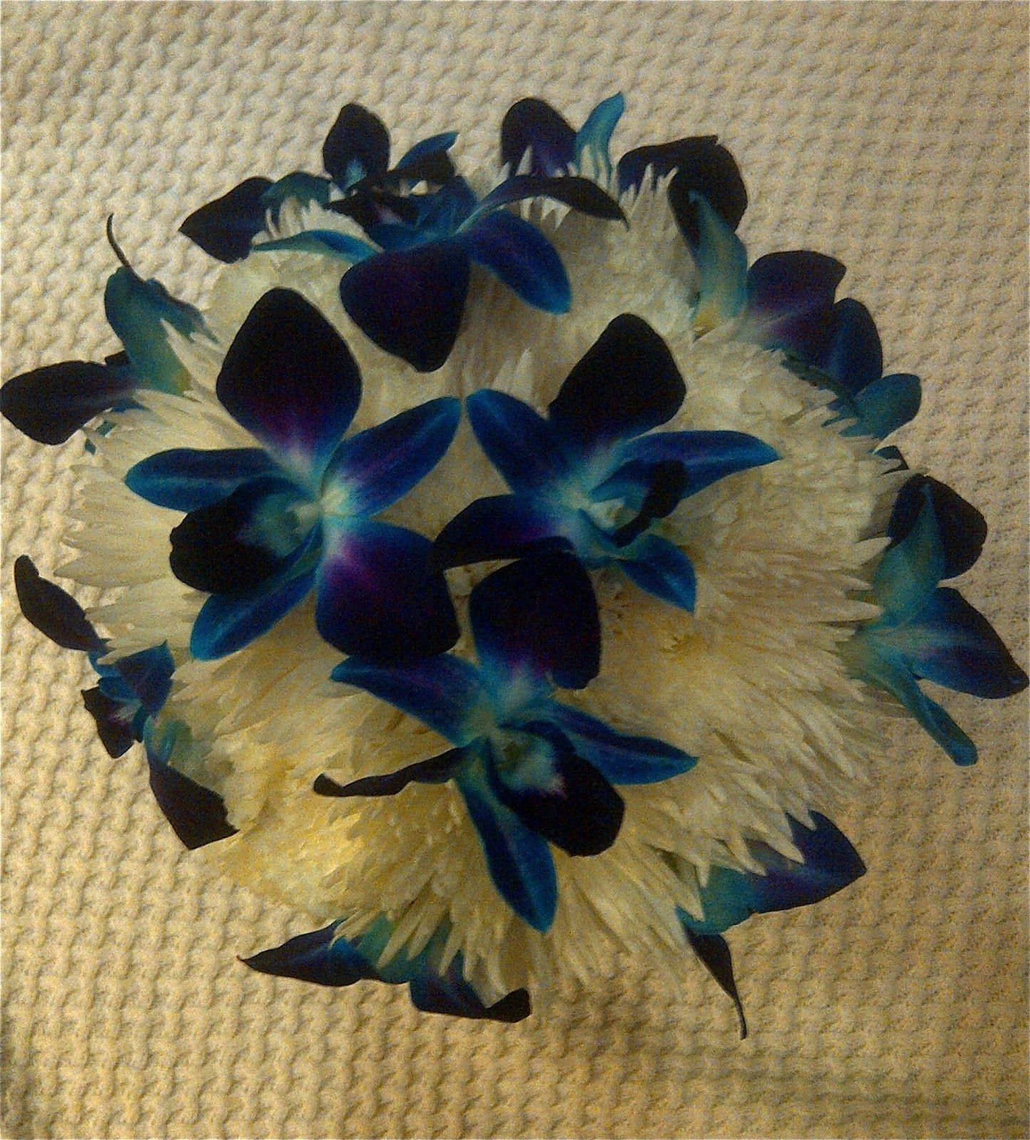 White u blue bridal bouquet white carnations u spider mums with