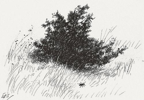Original Winnie The Pooh Drawings | Winnie the pooh drawing, Drawings, Winnie the pooh