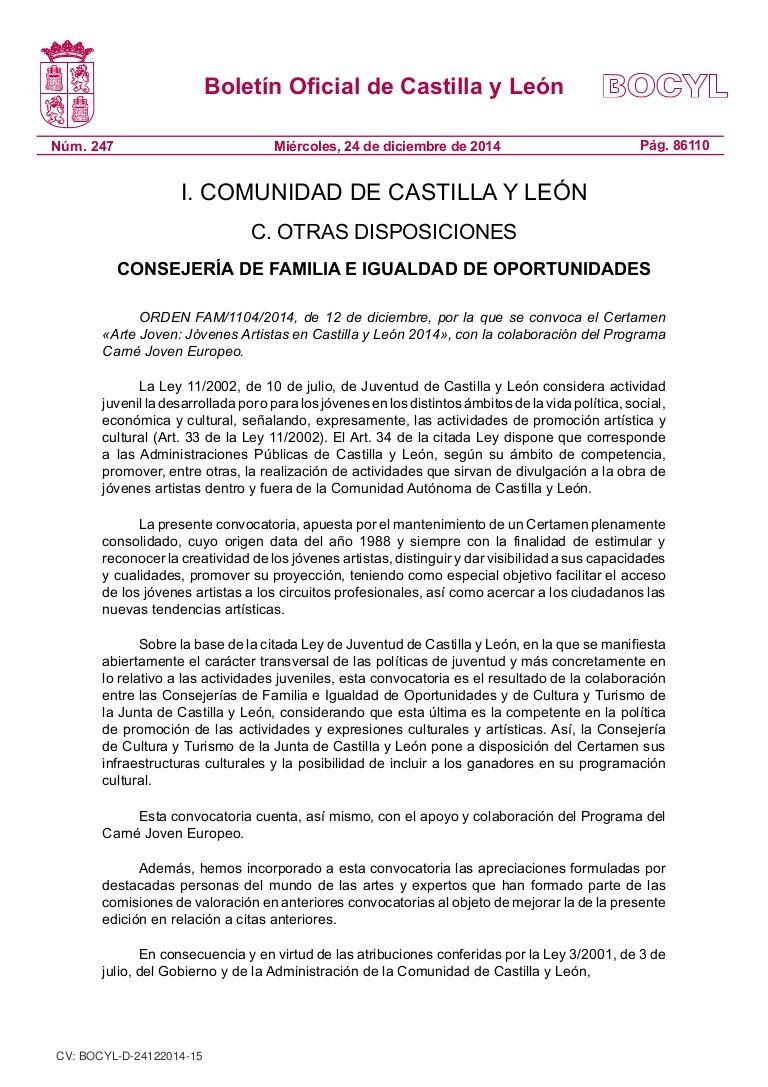 Certamen «Arte Joven: Jóvenes Artistas en Castilla y León 2014»
