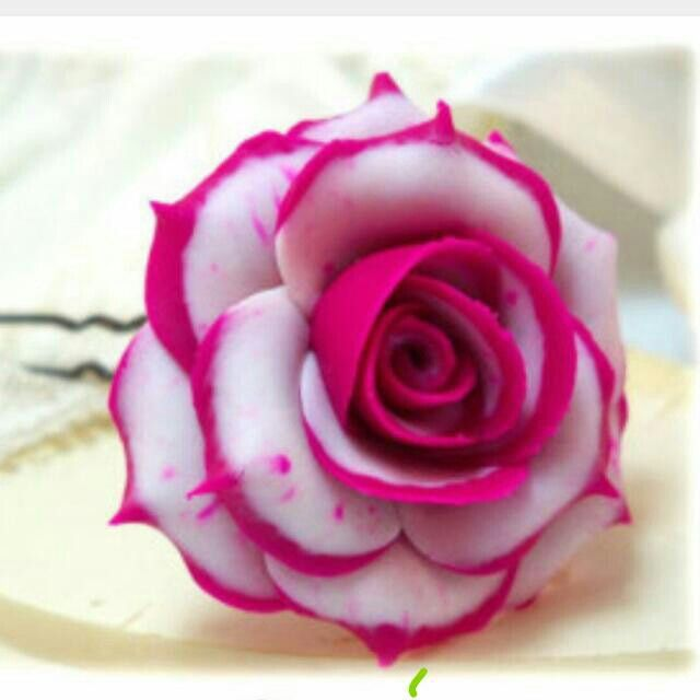 White Garden Rose Hair pinvinoth duraisamy on kavithaigal | pinterest | rose