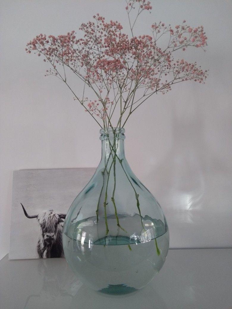 Roze Gipskruid Pink Gypsophila Gipskruid Flowers Huis Ideeen Decoratie Vaas Ideeen Decoratie