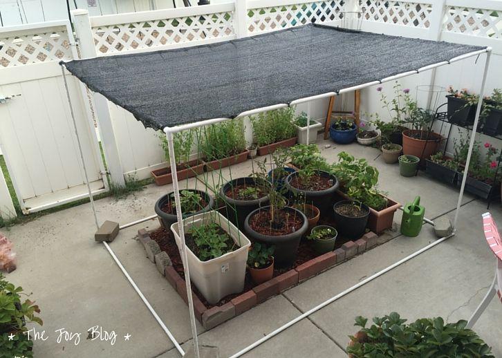 Full Sun Vegetable Garden Plans