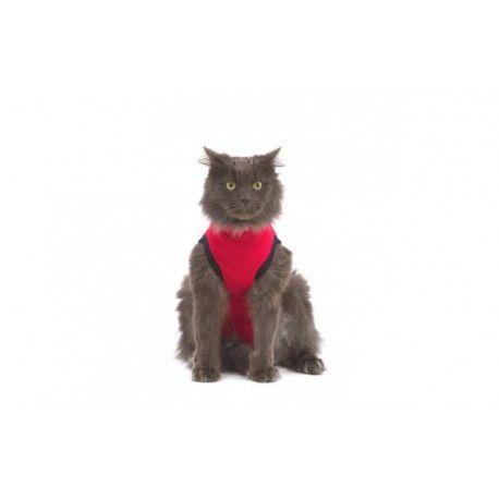 Medical Pet Shirt Cat Red