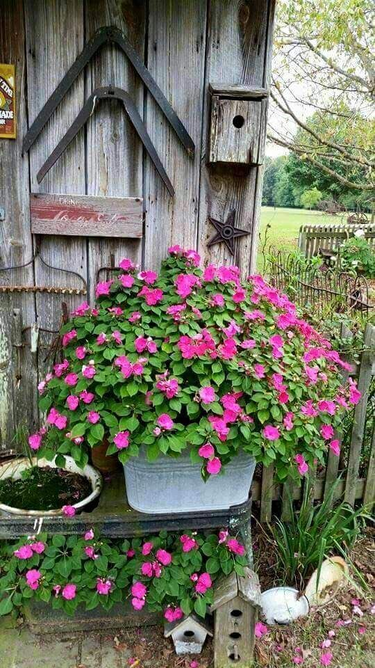 Pin de cecilia bonello en Bird house Pinterest Jardines rústicos