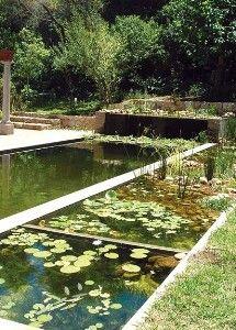 It's an eco pool :)