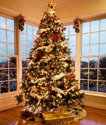 Fox Urine And Christmas Tree Theft Beautiful Christmas Trees Beautiful Christmas Christmas Decorations