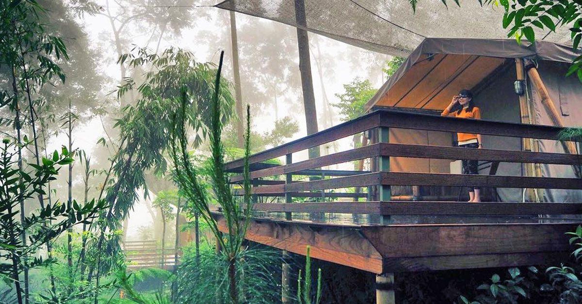 Tak Sedikit Tempat Wisata Alam Yang Instagrammable Di Bogor