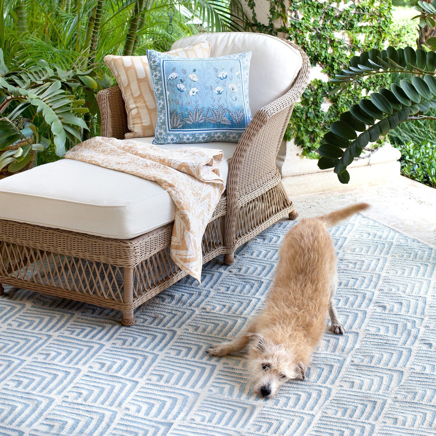 Bunny Williams for Dash & Albert Cleo Blue Indoor/Outdoor Rug ...