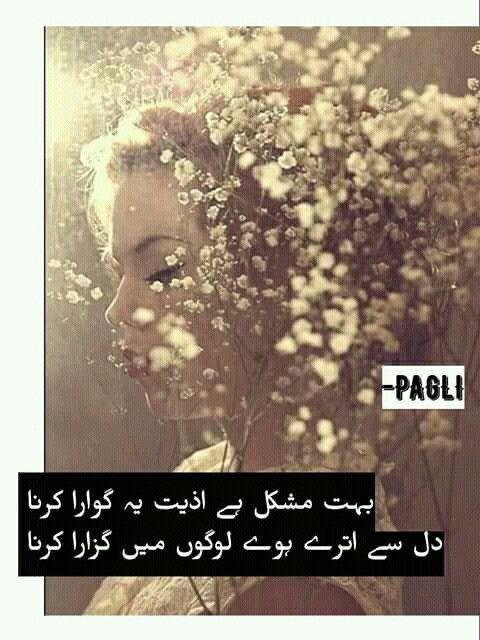 Pin on Hd Urdu poetry