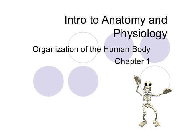 Chapter 1 Notes Intro To Anatomy And Physiology Nursing