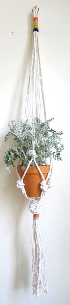 Cold Picnic — Colorblock Rope Plant Hanger