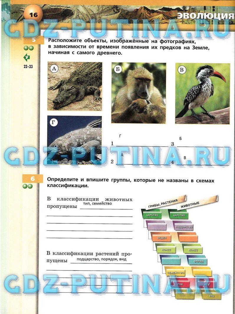 Михеева11 класс онлайн афанасьева