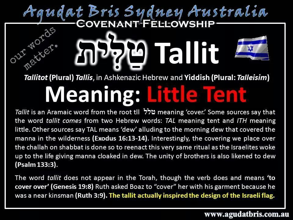 Tallit u003d little tent covering. Bible WordsHebrew ...  sc 1 st  Pinterest & Tallit u003d little tent covering | The Hebrew Language | Pinterest ...