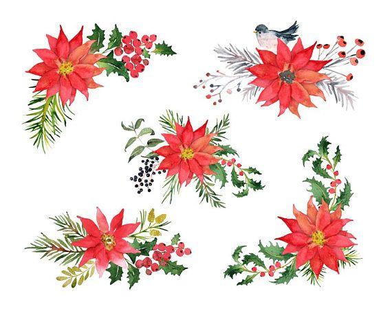 Christmas Poinsettia Clipart