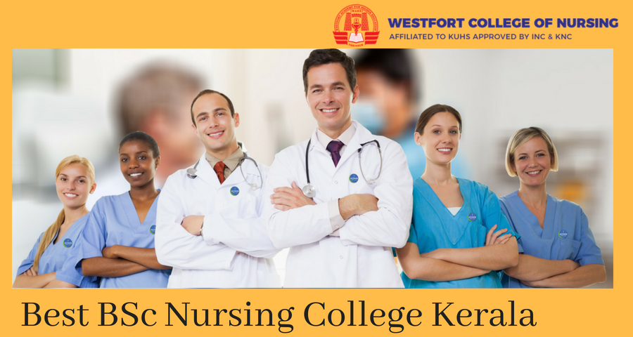 Best Nursing Colleges >> Searching For The Best Bsc Nursing Colleges In Kerala Wahe Is One