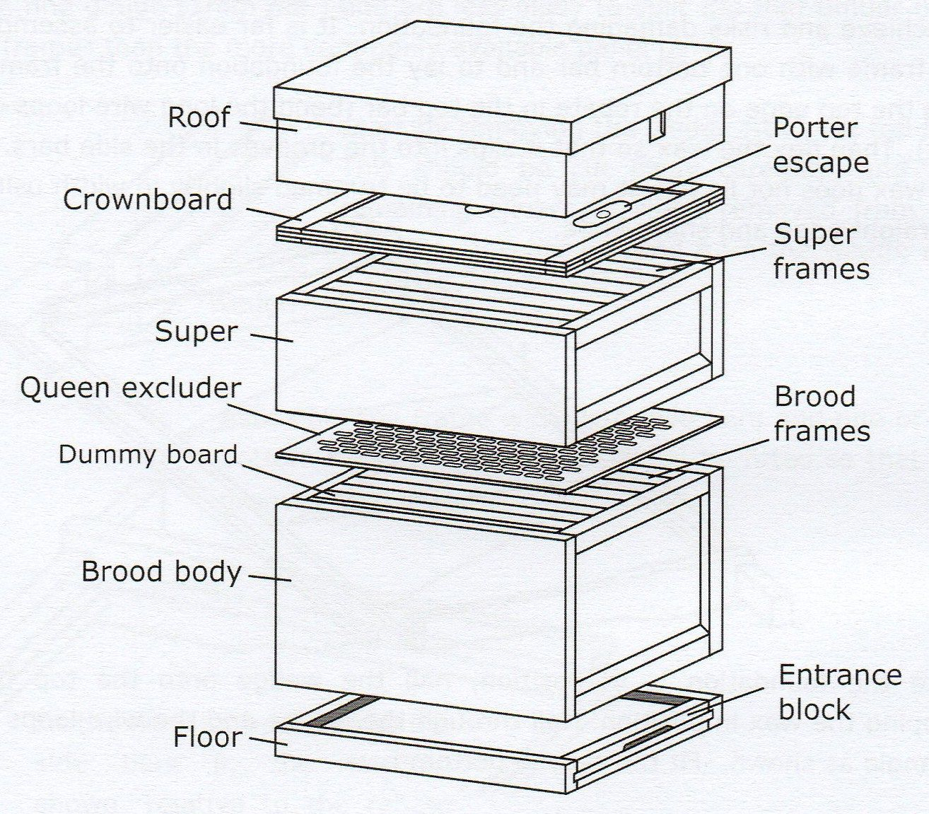 Diagram Of A Beehive