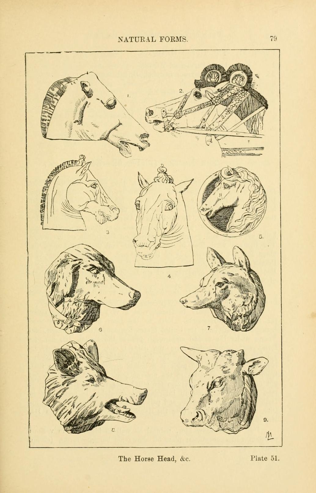 Handbook Of Ornament A Grammar Of Art Industr Art Ornament Drawing Art Instructions