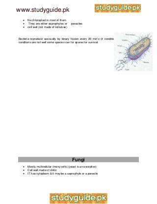 Igcse biology notes gooood