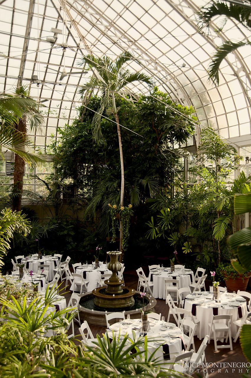 Wedding reception in the Palm House at Franklin Park ...