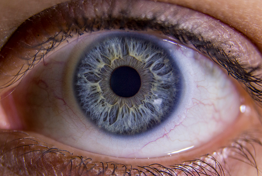 Pin By Inspired Writing On Eyes Blue With Images Fractals In Nature Human Eye Macro Photos