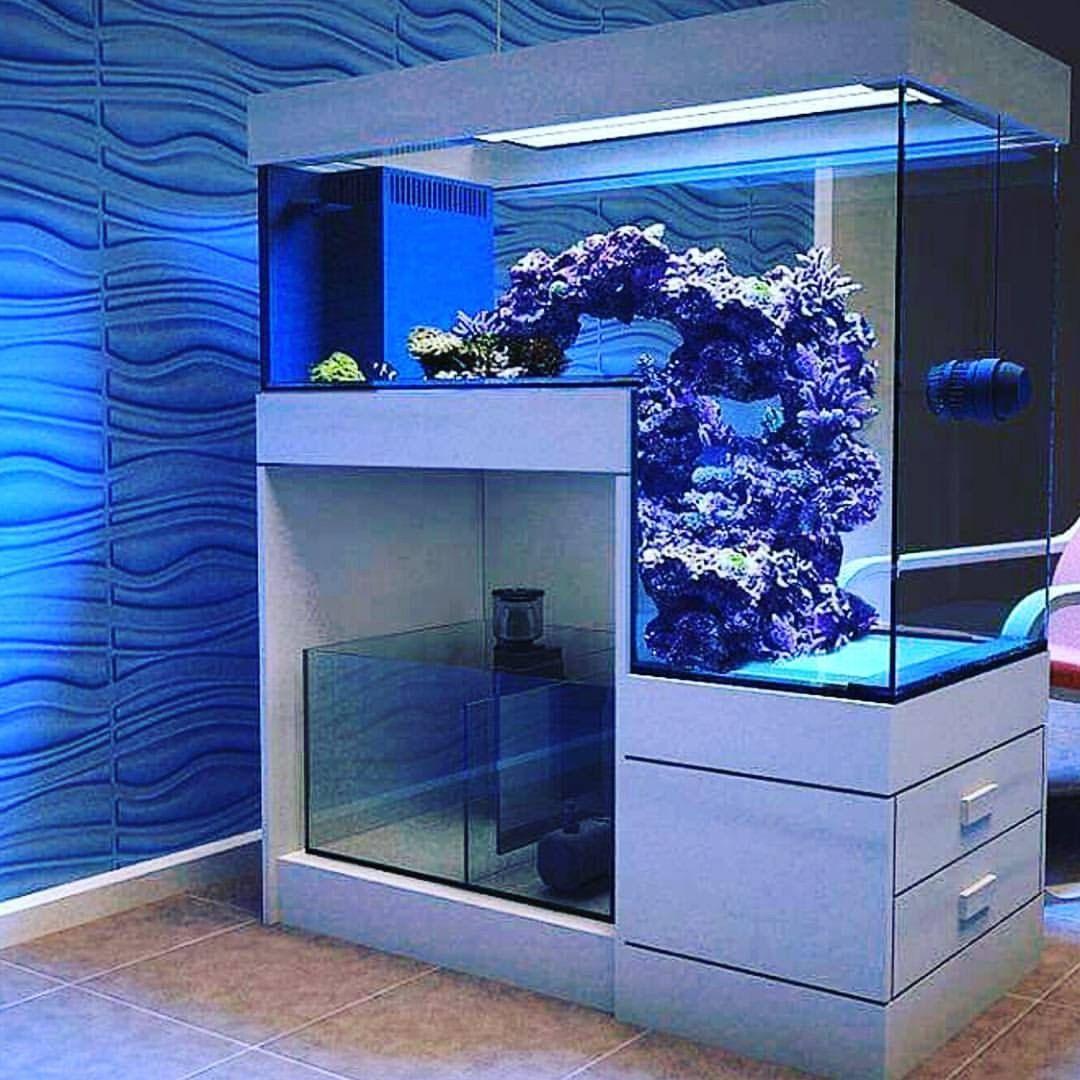 Pin by Sourabh Hirau on architecture/nature | Diy aquarium ...