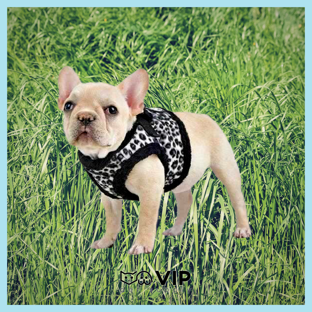 Leonard Vest Style Dog Harness By Puppia Check this link