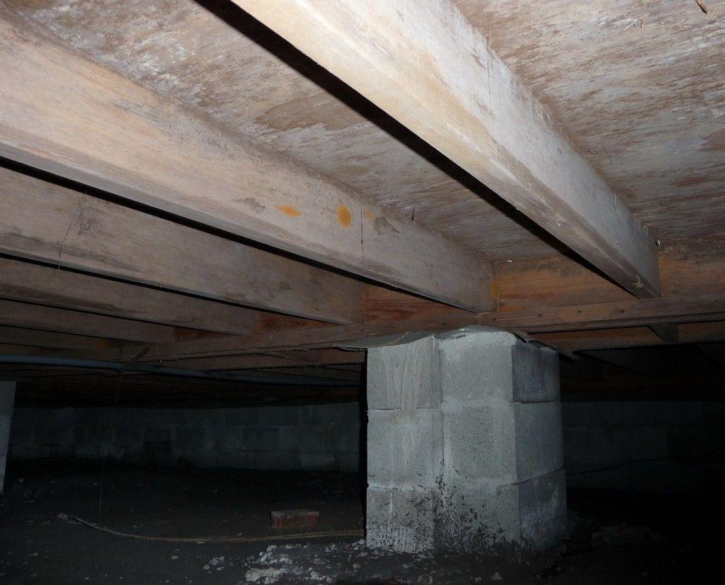 Basement Crawl Space Mold Removal Prevention And Saving Money Custom Kitchen Island Crawlspace Custom Kitchen