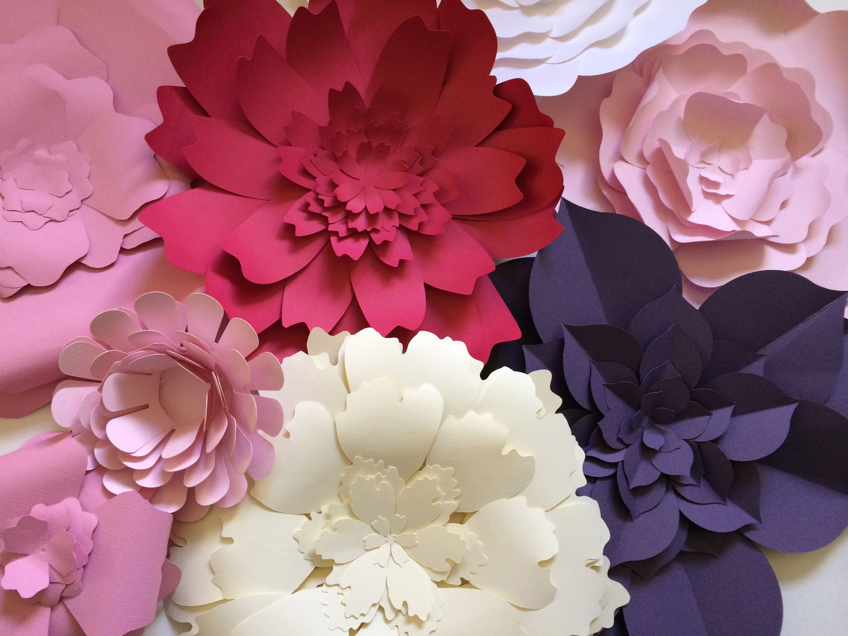 Gorgeous large paper flowers these gorgeous paper flower blooms gorgeous large paper flowers these gorgeous paper flower blooms will soon be available in my shop dhlflorist Choice Image