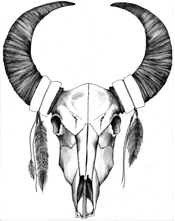 Southwestern white buffalo skull arts crafts tatouage dessin cr ne id es de tatouages - Courge dessin ...