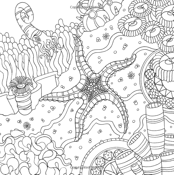 Starfish Ocean underwater sea Coloring pages colouring adult ...