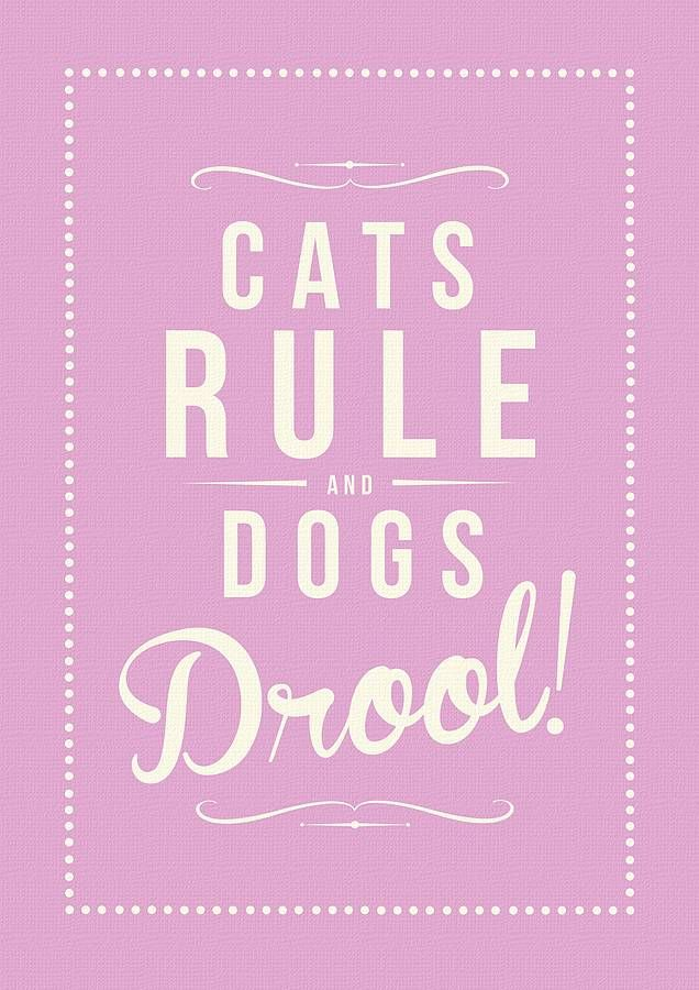 Catz Rule Google Search Cats Rules Dogs