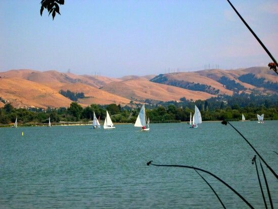 Lake Elizabeth Fremont Ca Bay Area Cities Fremont California