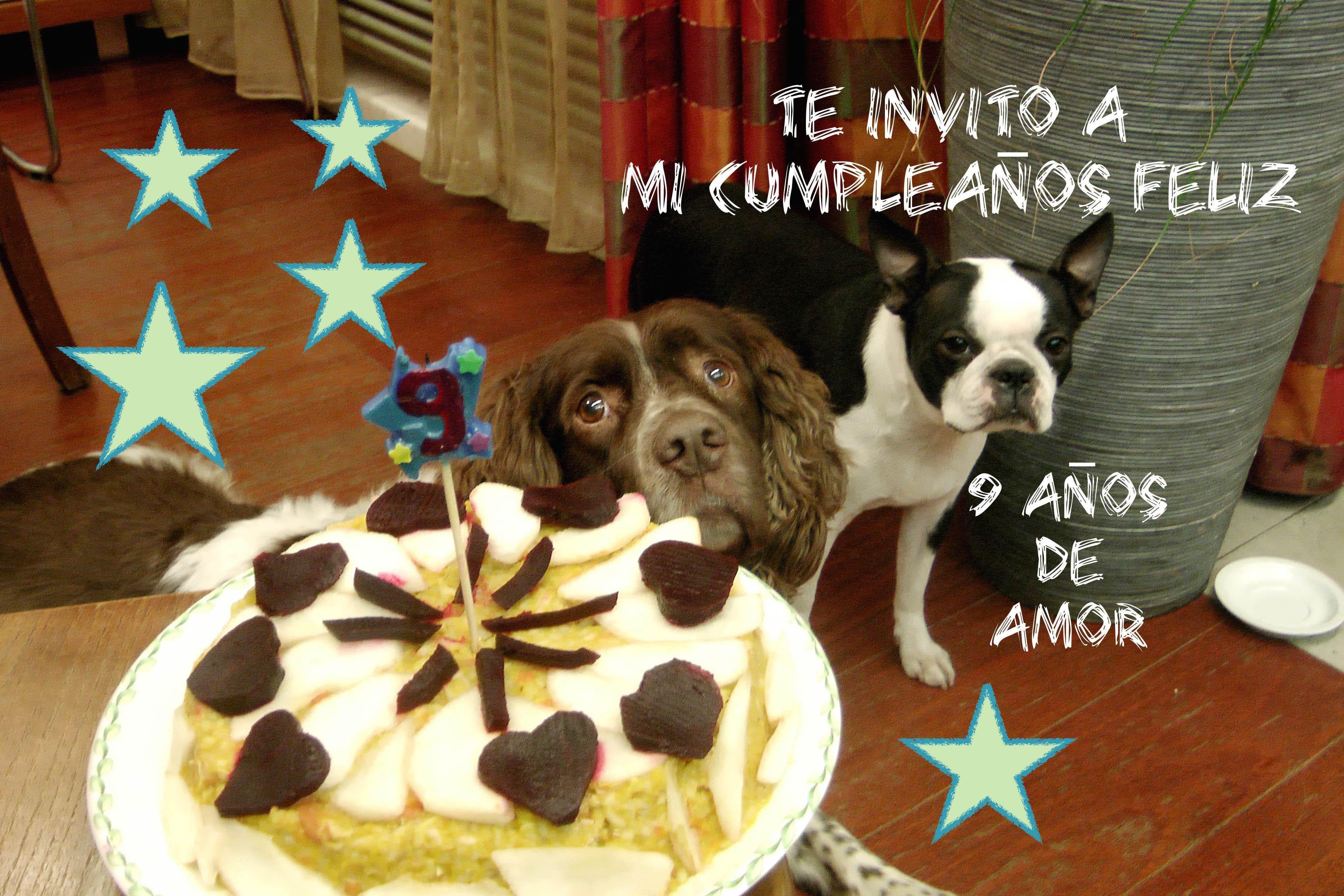 Vlog Cómo Hacer Torta Pastel Tarta Cumpleaños Sin
