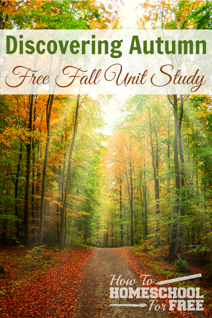 Ways to Explore Fall Nature with Kids In Hindi recommendations