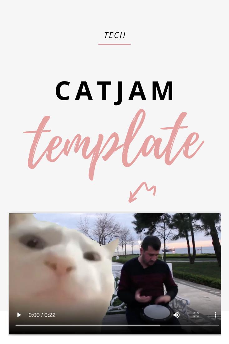 Catjam Meme Template Meme Template Memes Templates