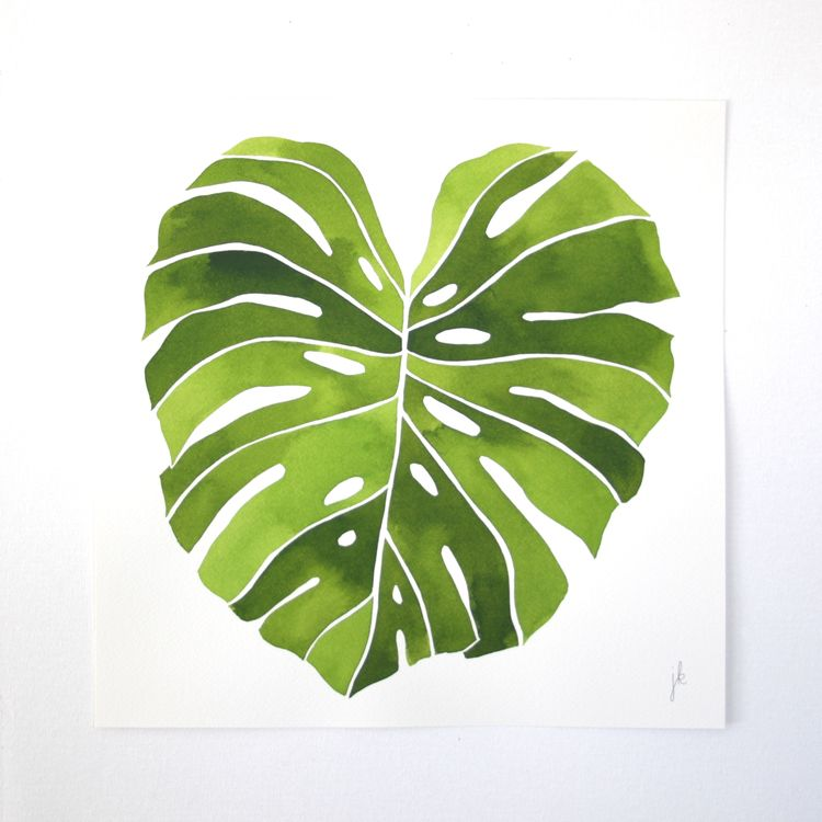 12x12 green monstera british colonial style for Art minimaliste artiste