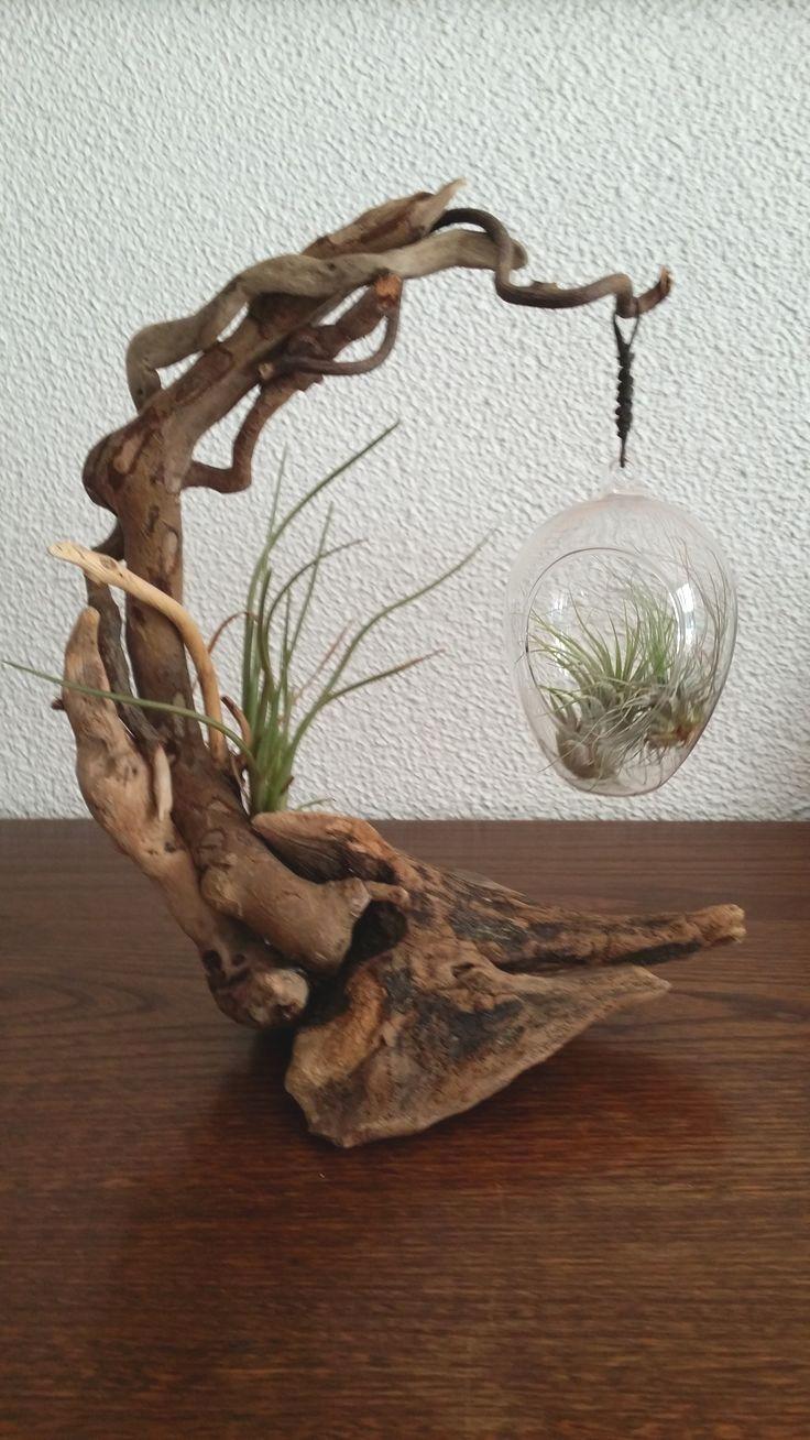 driftwood sculpture (year