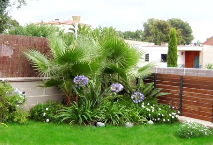 jardines palma inspiracin de diseo de interiores