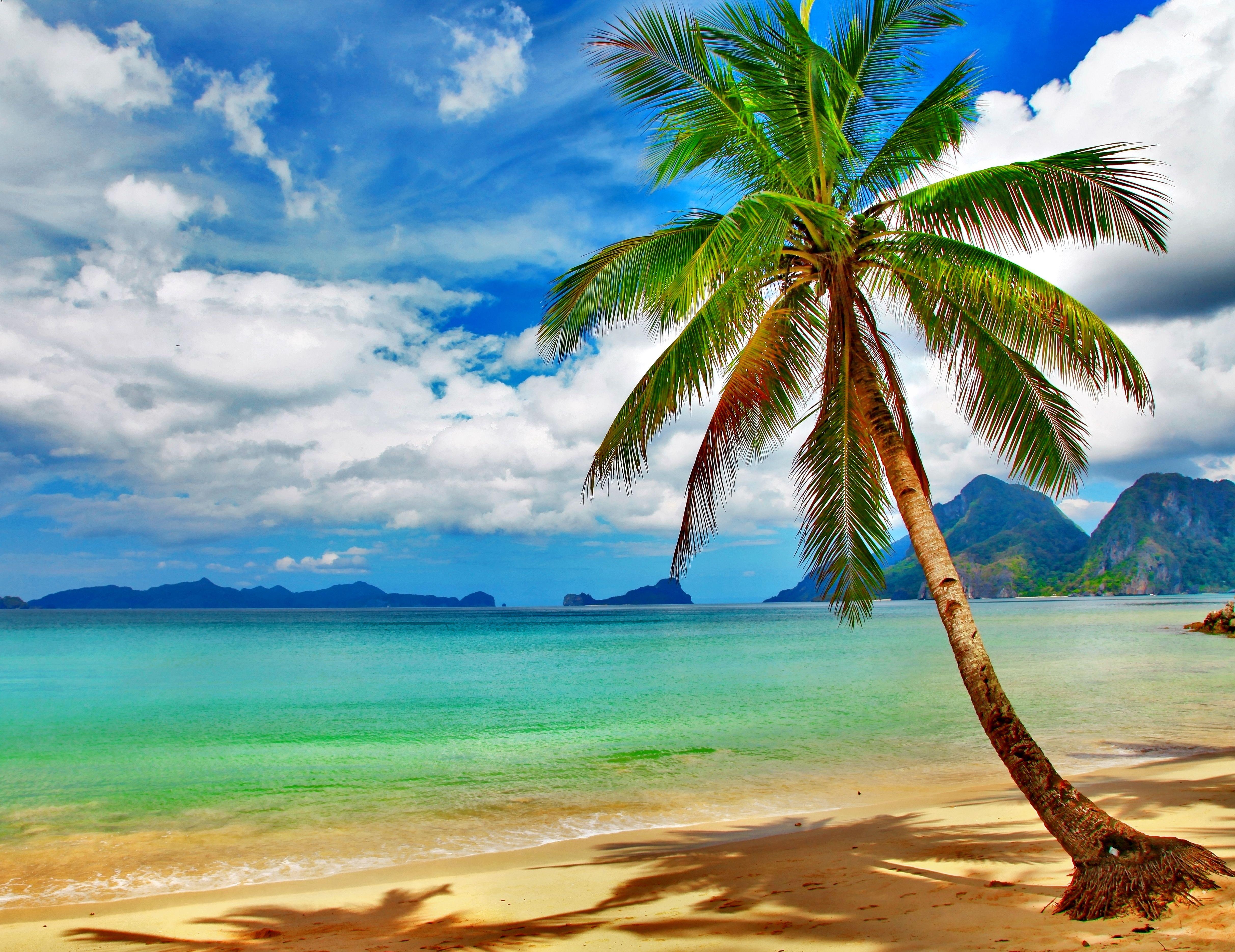 Tropical Beach Desktop Background Wallpaper Beach Scenery Beach Pictures Beach
