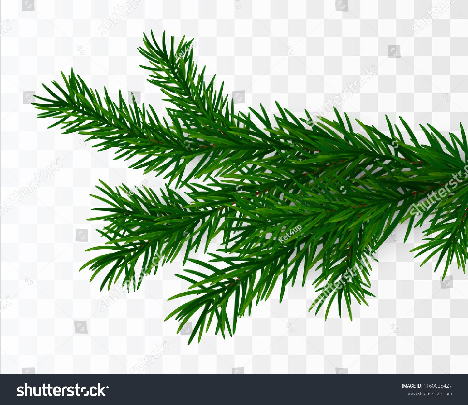 Christmas Tree Branch Fir Branch Isolated Vector Illustration Branch Tree Christmas Fir Christmas Tree Branches Tree Branches Christmas Vectors