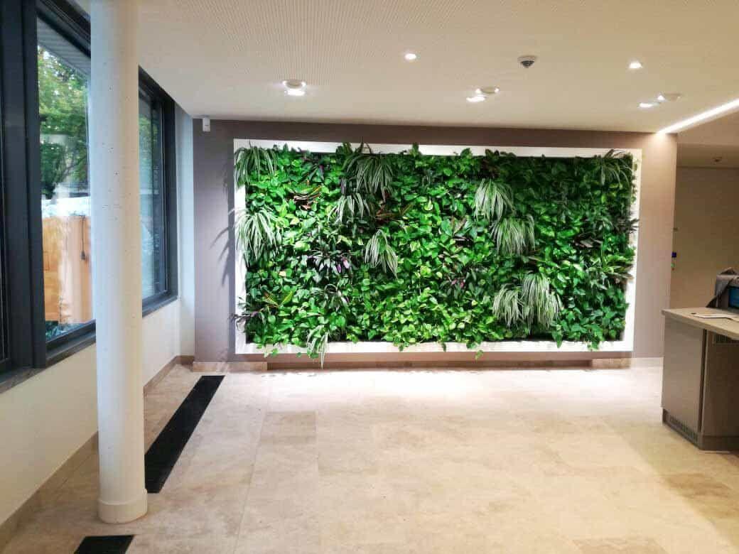 Grüne küchenwand ~ Die grüne wand projekt: grüne wand mit umlaufendem lackierten