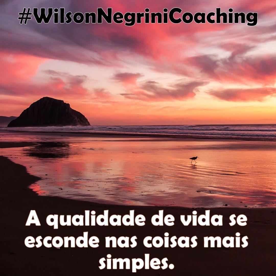 Pin Em Frases De Motivacao Coaching Meditacao